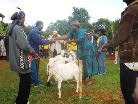 Passing on the Gifts month is a campaign that seeks to raise awareness by the extension of funds to widen the frontiers of Heifer International's global ...