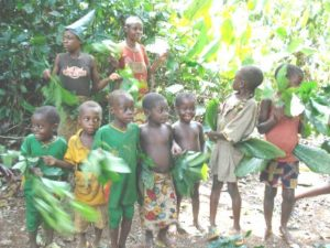 These Baka children will now leave their old ways and go to school